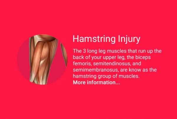 hamstring